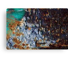 braught to you by: urban decay Canvas Print