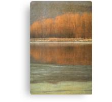 Winter Hues Canvas Print
