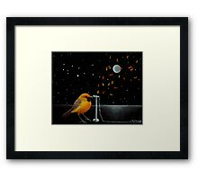 Chatting the Night Away Framed Print