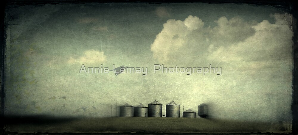 Silos of the Praires by Annie Lemay  Photography