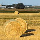 Hay Bales of the Midwest by Starsania