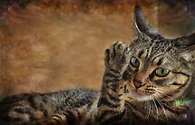 High Five by Barbara Manis