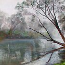 Winter on the Goulburn by Lynda Robinson