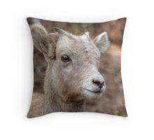 Curious Lamb Throw Pillow