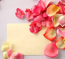 Wedding Cards by rogersky