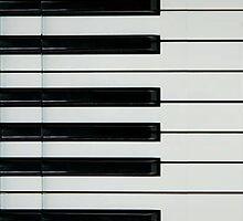 Piano Keys by ohmyglob