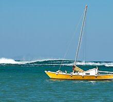 The Catamaran & The Cormorants by Gina Smyth