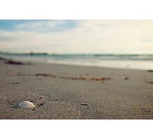 The Shell Photographic Print