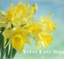 never lose hope by Teresa Pople