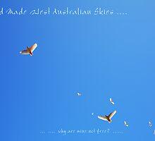 Free My Skies by Robert Phillips