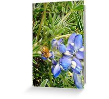 Bumble Bee 2000 Greeting Card