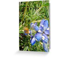 Bumble Bee 2000 Greeting Card