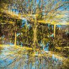 natures double exposure by ronnyvan