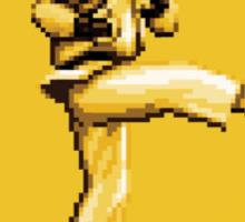 Beware of Ryu Hurricane Kick Road Sign - Second Version Sticker