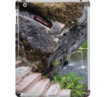 The Wishing Steps iPad Case/Skin