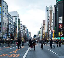 Akihabara Panorama by Kerry  Becker