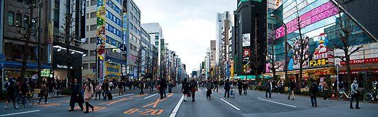 Akihabara Panorama by Kerry  Becker