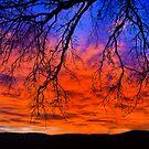 sky fire by plamenx