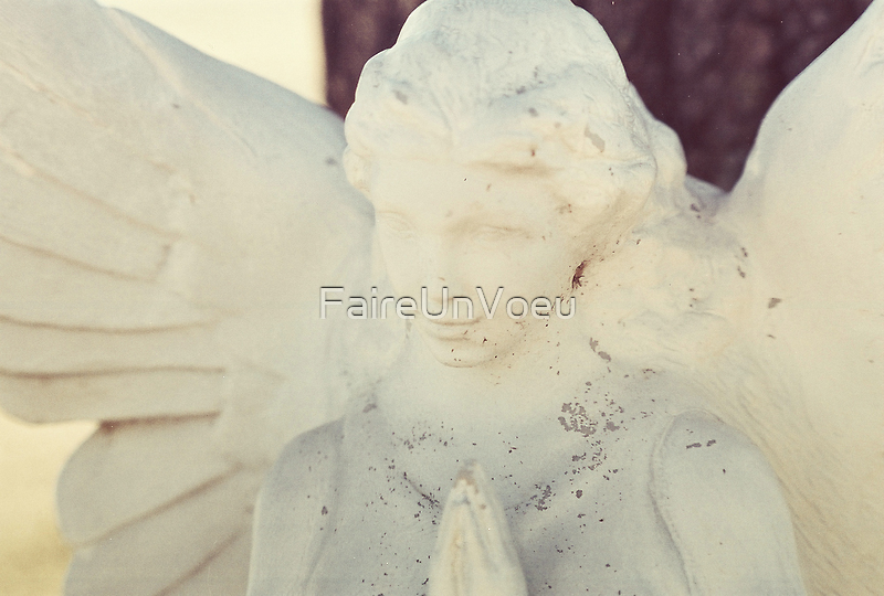 Give Me Wings by FaireUnVoeu