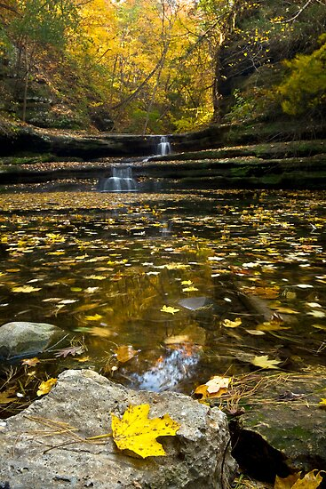 Autumn at Giant's Bathtub by Adam Bykowski