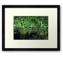 Deep in the green Framed Print