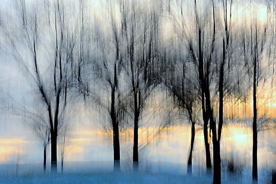 winter sunrise.. by JOSEPHMAZZUCCO