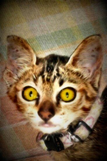 Fractalius Kitty by missmoneypenny