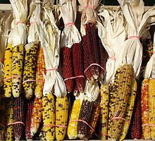 Indian corn by Leah wilson