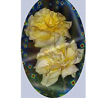 Emblematic yellow roses Photographic Print