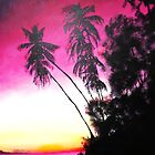 Palms in Silhouette by JamesLee