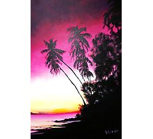 Palms in Silhouette Photographic Print