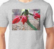 BLOSSOMING WINTER CACTUS Unisex T-Shirt