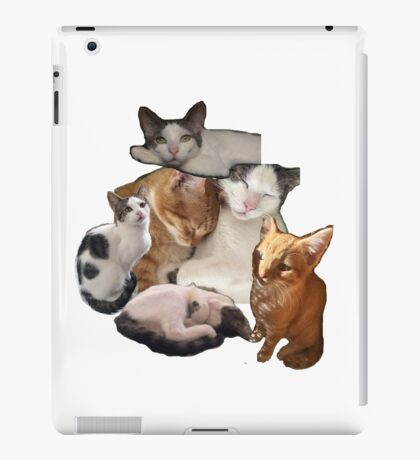 cut and paste cats iPad Case/Skin