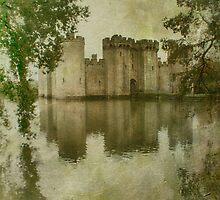 Bodiam Castle by Nikki Smith