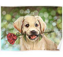 Romantic puppy Poster
