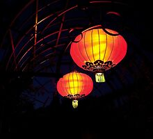 Chinese Lanterns by PhotosByHealy