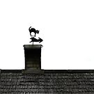 Decorative rooftop by Cebas