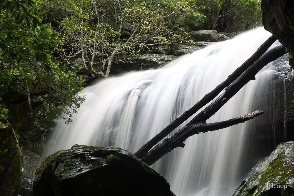 Glen Rock Waterfall by philcoop
