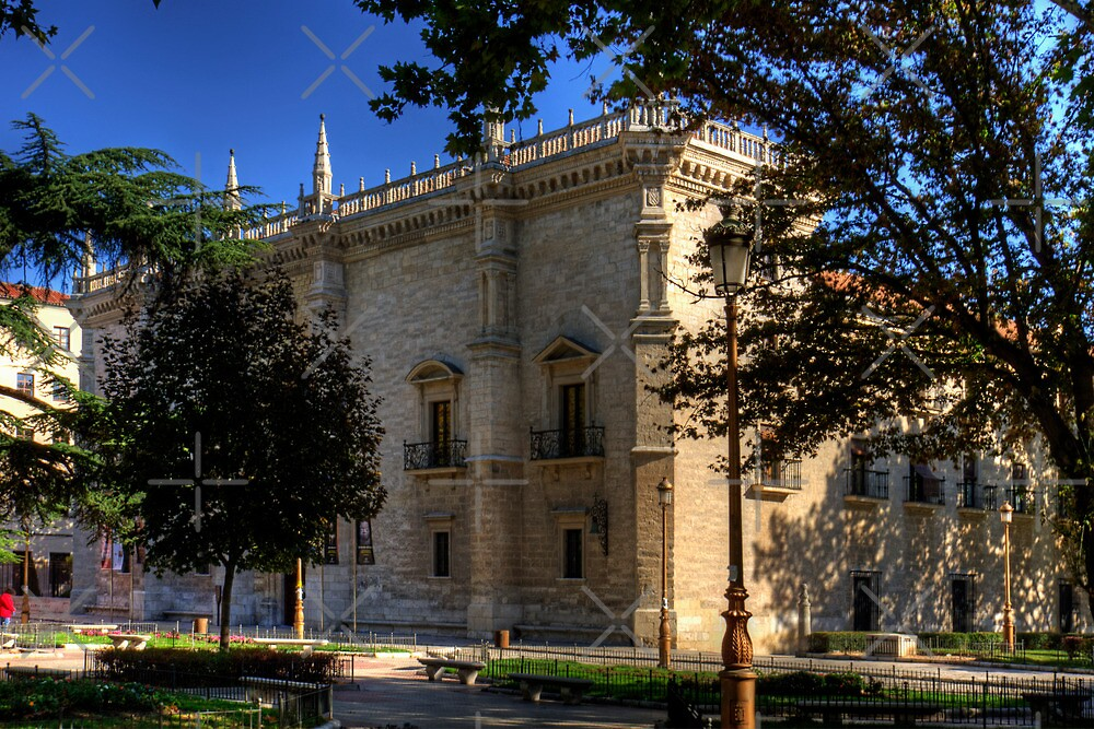 Colegio de Santa Cruz by Tom Gomez