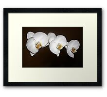 Peace Tranquility Framed Print