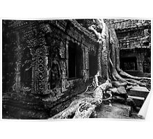 Famous Roots, Cambodia Poster