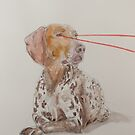 Laser Pointer by rakka