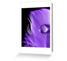 Natures Magnifying Glass Greeting Card
