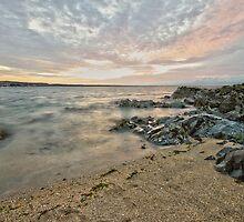 Skerries Ocean View by Martina Fagan
