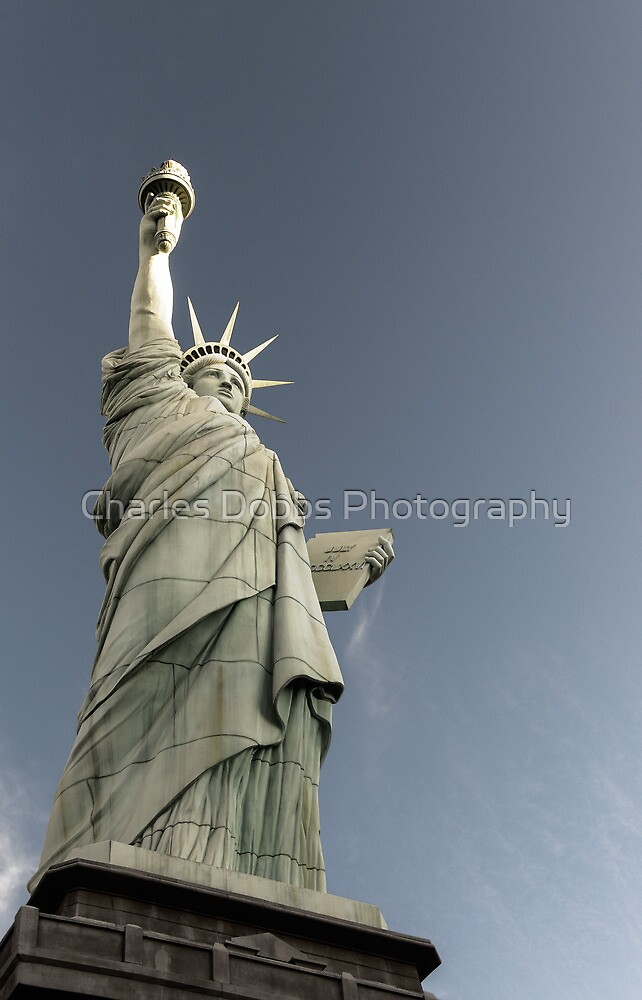 Liberty Enlightening the World by Charles Dobbs Photography