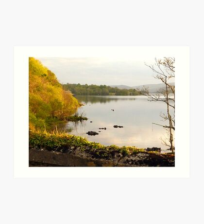 Evening On Lake Gartan Art Print