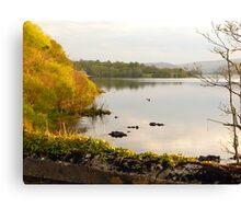 Evening On Lake Gartan Canvas Print