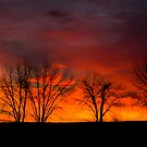 Plain Sunrise Color Palette by John  Sperry