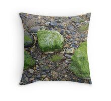 Pebbles and Seaweed Throw Pillow