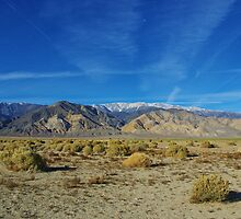 High desert and White Mountains, Nevada by Claudio Del Luongo